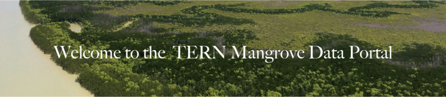 Welcome to the TERN Mangrove Portal